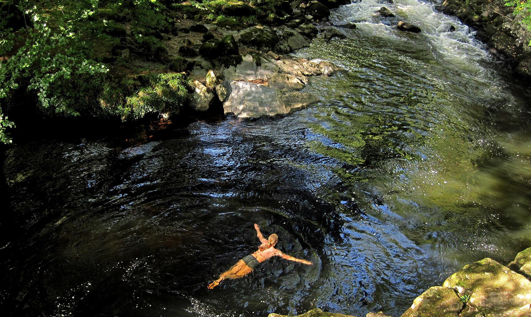 Do not swim against the stream, do not swim with the stream, swim where you want 32