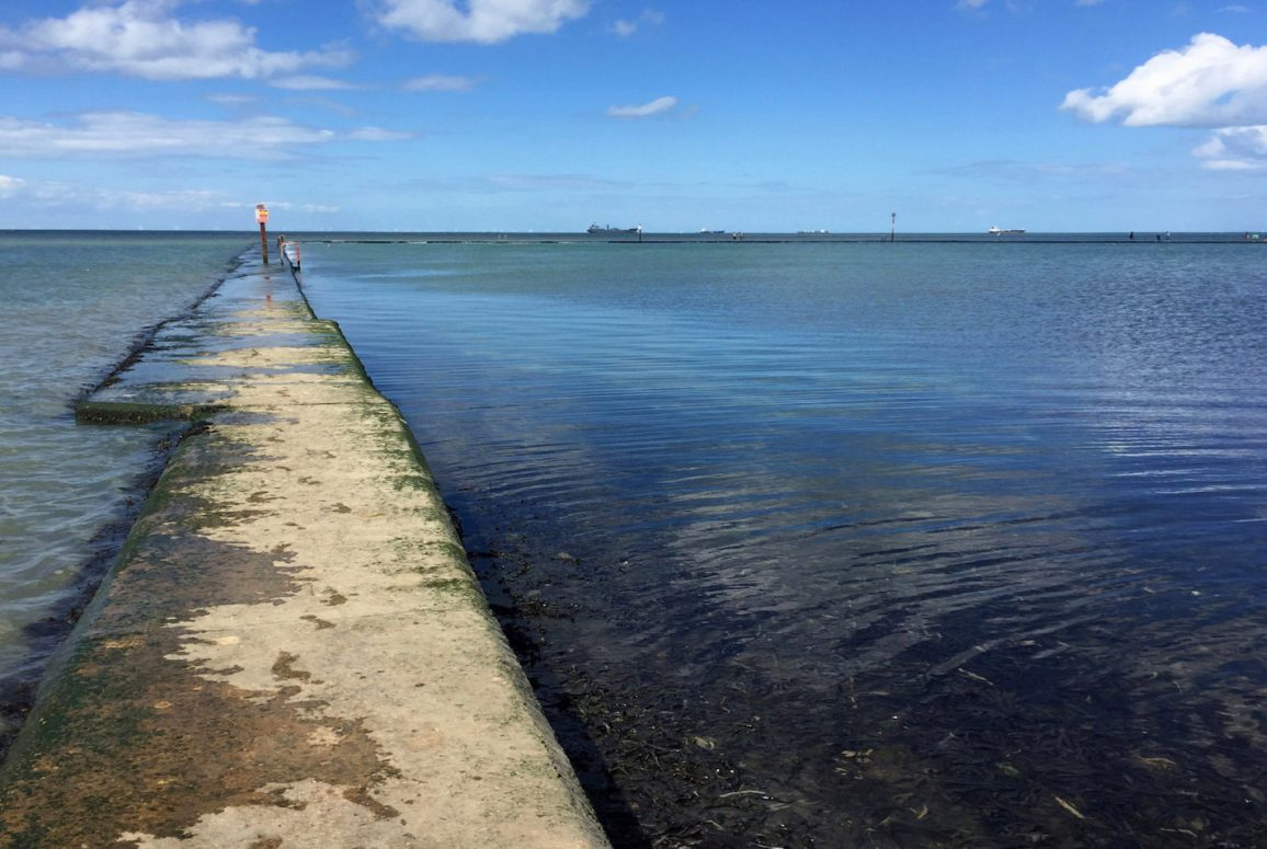 outdoor-swimming-society-feature-story-100-swims-walpole-bay